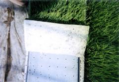 水稲用育苗培土 写真4